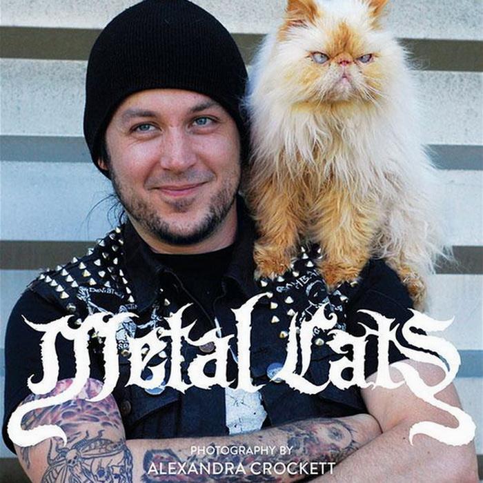 metal_cats_6 (700x700, 191Kb)