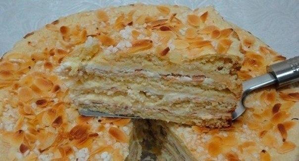 тортик на меду (604x325, 186Kb)