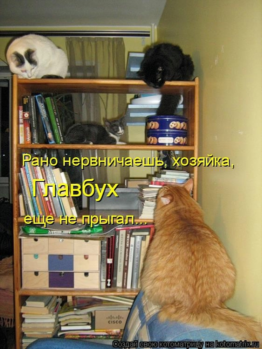 kotomatritsa_k (524x700, 270Kb)