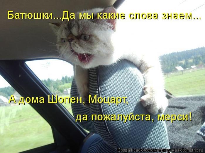 kotomatritsa_zS (700x524, 240Kb)