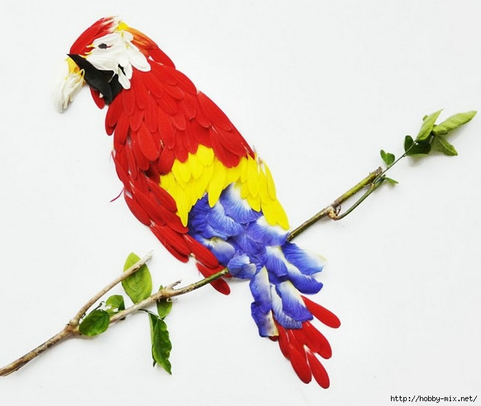 red-hong-yi-flower-bird-2 (700x590, 144Kb)