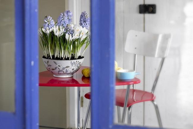 Луковичные цветы в интерьере. Подборка красивых фотографий (6) (650x433, 207Kb)