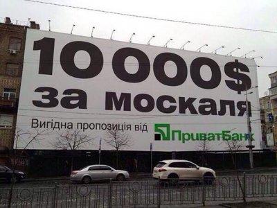 9 (400x300, 89Kb)