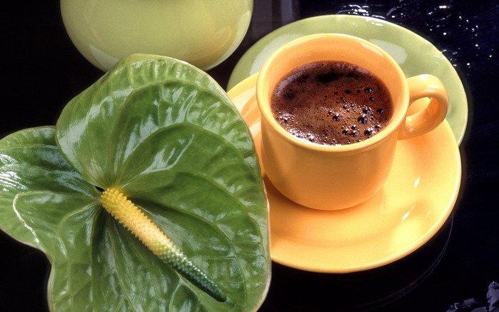 Полезные свойства зеленого кофе (1) (699x437, 252Kb)