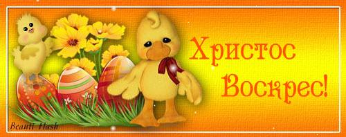 13-04-2014 18-59-12 (500x198, 45Kb)