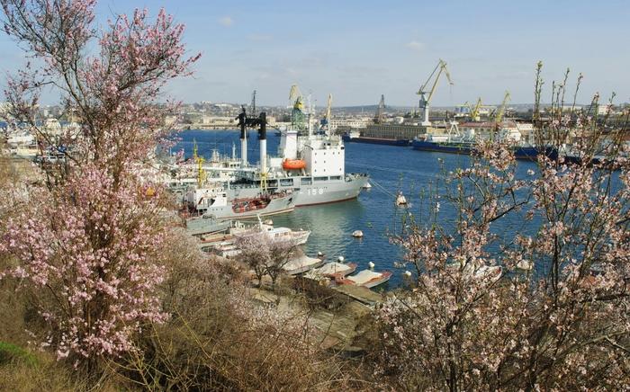 Весна в Севастополе (700x436, 314Kb)