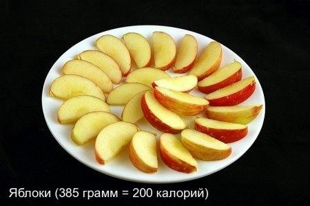 12 (450x299, 55Kb)