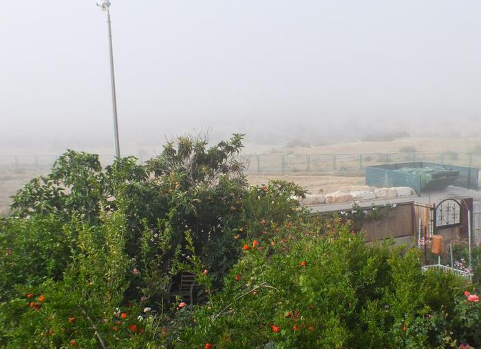 туман1 (700x507, 55Kb)