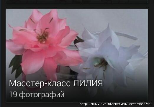 IMG_20140312_182941 (522x365, 81Kb)