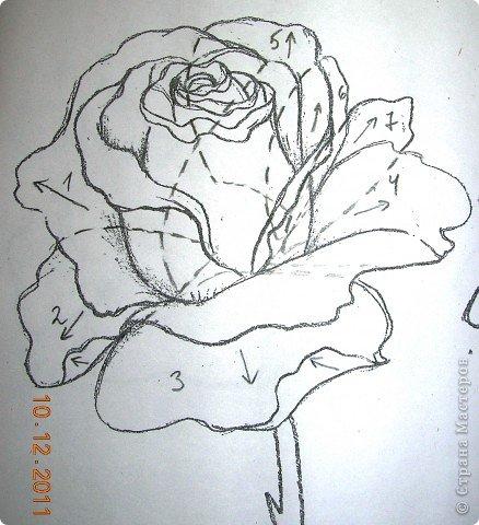 Rosa encantador.  Aplicación de paja.  Master Class (8) (438x480, 176Kb)