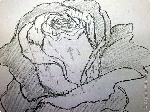 Rosa encantador.  Aplicación de paja.  Clase magistral (16) (520x390, 214Kb)