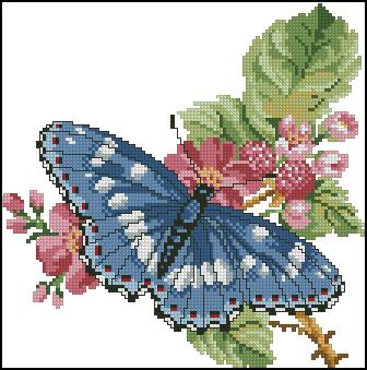 5282851_Blue_Butterfly (336x339, 119Kb)