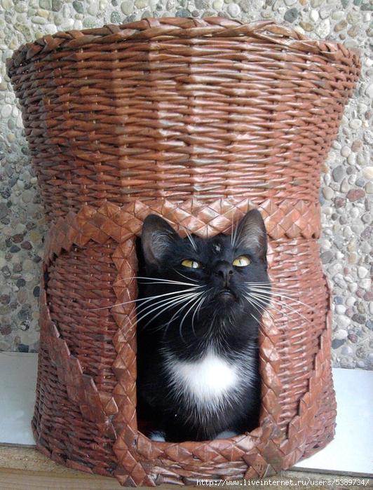 плетеные домики для кошек, домики для кошек из газетных трубочек, домики для кошек из газет, домики для кошек своими руками фото, домики для кошек идеи