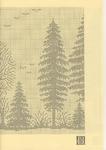 Превью Renato Parolin La Foresta di Fanes (3) (494x700, 291Kb)