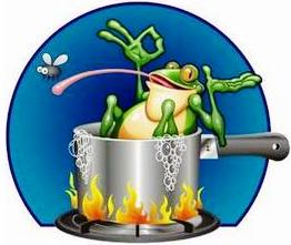 Frog (262x221, 12Kb)