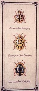 Ladybugs (129x300, 41Kb)
