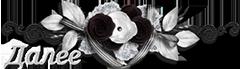 5369832_116033011_jd (240x69, 52Kb)