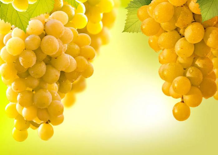 виноград 21 (700x497, 302Kb)