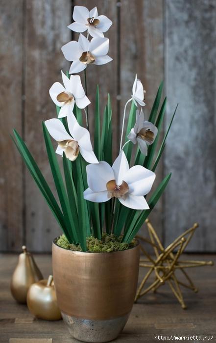 Орхидея ЦИМБИДИУМ из бумаги (5) (441x700, 200Kb)