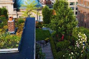 газон-на-крыше-технология (300x200, 26Kb)