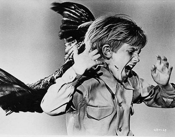 hitchcocks-birds-child-edit (575x449, 60Kb)