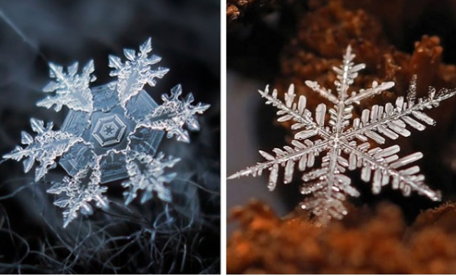 снеж.1 (650x393, 91Kb)