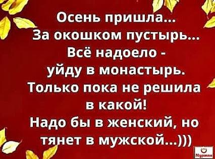 5916861_image_7 (426x316, 58Kb)