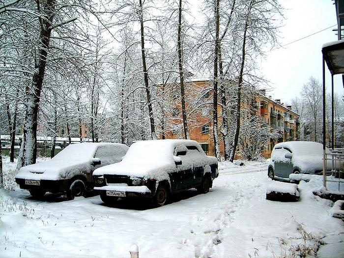 В снежных попонах (700x525, 391Kb)