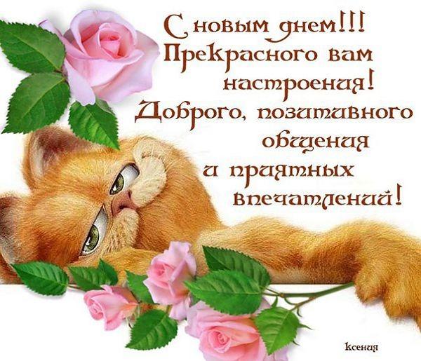 http://img1.liveinternet.ru/images/attach/c/9/126/313/126313149_e68bf1827786e904979967a0eb18b278.jpg
