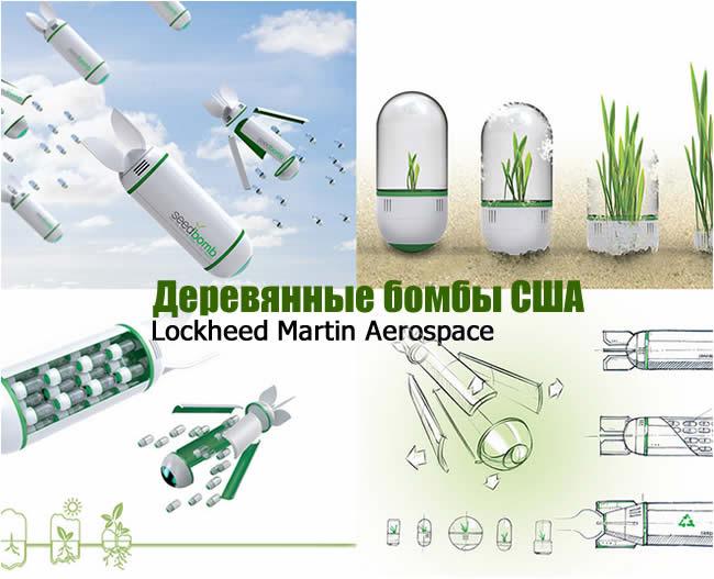 seedbomb_lockheed_martin_aerospace (650x527, 65Kb)