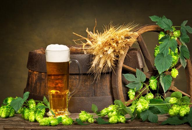 Удивительные свойства пива, полезные в быту