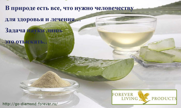 forever-living-products (700x417, 55Kb)