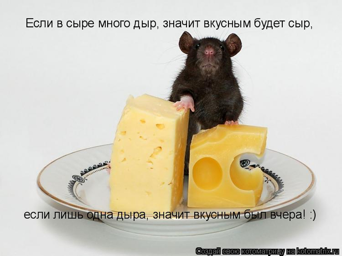 kotomatritsa_sV (700x524, 199Kb)