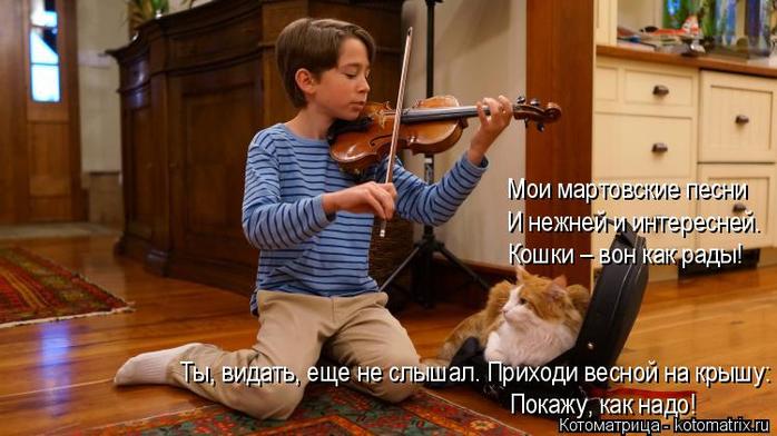 kotomatritsa_wx (700x392, 308Kb)
