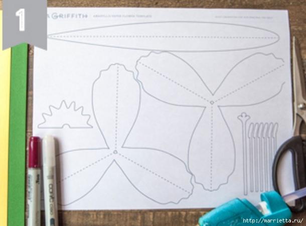 Амариллис - цветы из бумаги своими руками (3) (610x450, 116Kb)