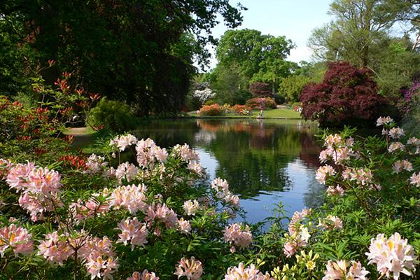 1.Английский Сад Эксбери (600x400, 433Kb)