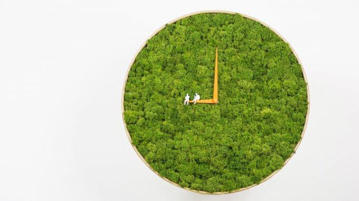 часы из мха Moss Clock 1 (700x393, 196Kb)