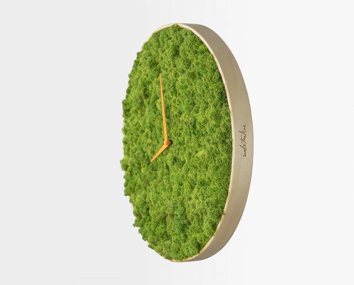 часы из мха Moss Clock 5 (700x564, 142Kb)