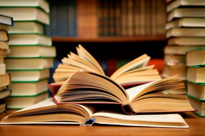 4622790_books2_1_ (700x466, 207Kb)