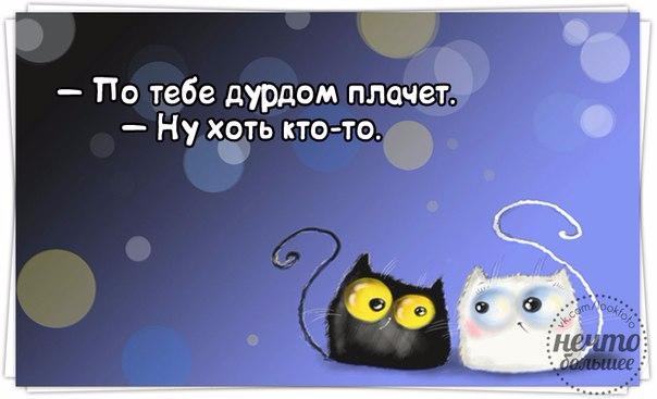 1418756223_frazochki-15 (604x367, 154Kb)