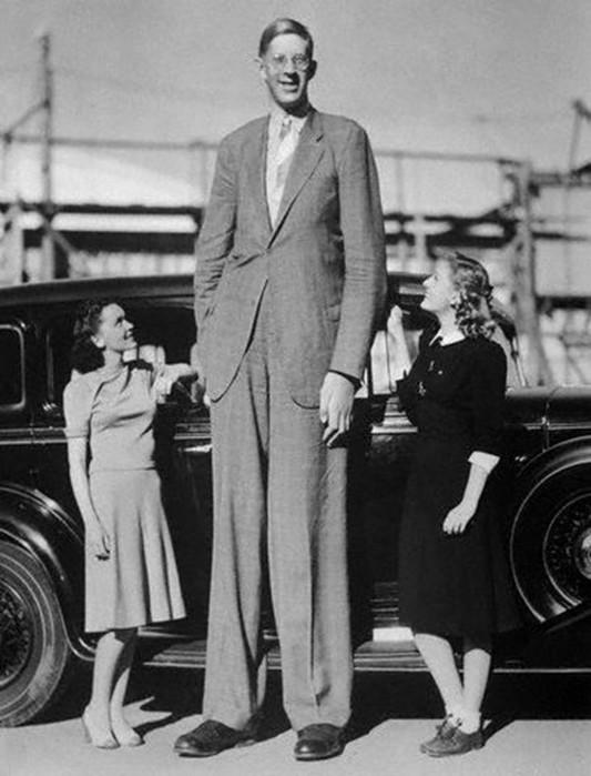 Почему мужчины крупнее женщин