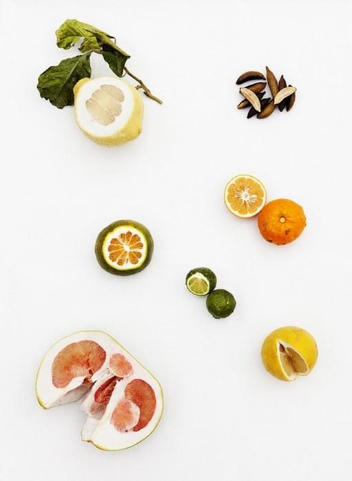 Что такое сочетание пищевых продуктов? 10 основных принципов
