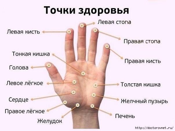 5239983_tochki_zdorovya (604x453, 97Kb)