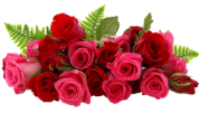 119606819_110668285_proxy_imgsmail_ruCA1EIHWG (200x113, 47Kb)