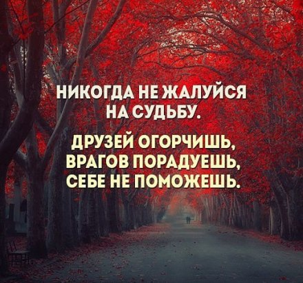 3416556_XCBCk6qbEO0_1_ (440x411, 54Kb)