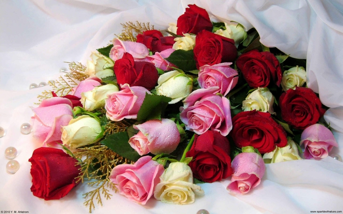 13625_rose_bouquet_w_2560x1600 (700x437, 245Kb)