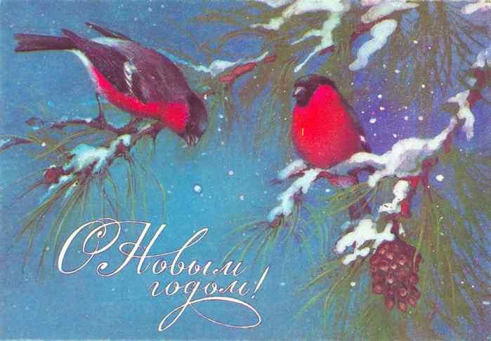 снегири открытка/3881693_5b02cc900c319bc1fa26690600384756 (700x486, 28Kb)