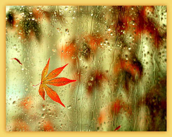 4897960_479067__rain_p (700x546, 126Kb)/4897960_479067__rain_p2 (700x556, 123Kb)