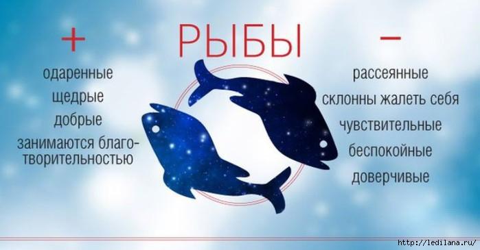 3925311_Plusi_i_Minysi_ribi (700x365, 110Kb)