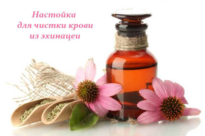 1449742599_Nastoyka_dlya_chistki_krovi (695x463, 289Kb)
